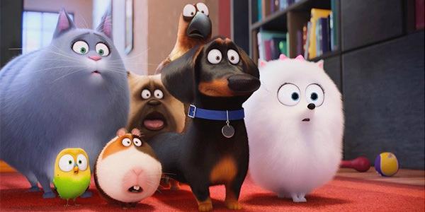 Pets vita da animali tutti gli errori del film animato