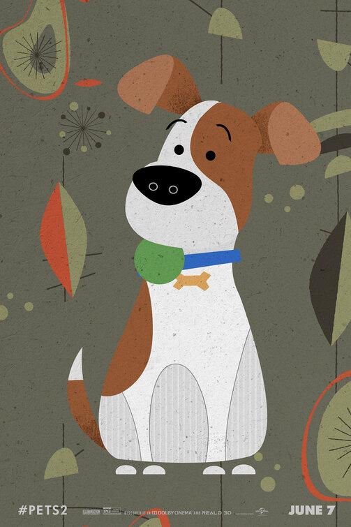 WOLF ANATOMIA Felpa illustrazione Cartoon Fumetto ponticello Disegno Animale Sudore