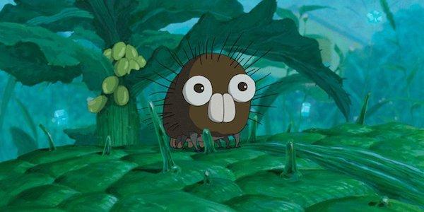 Boro Miyazaki