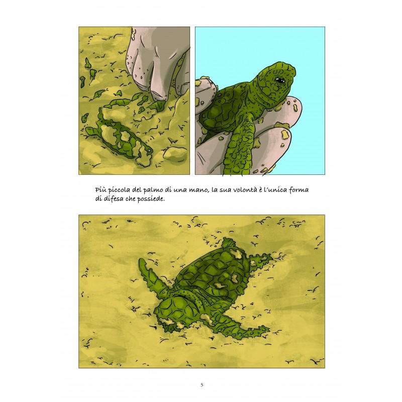 La memoria delle tartarughe marine, anteprima 03